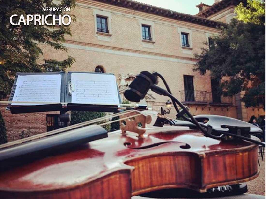 Bodas en el palacio de Aldovea, Agrupación musical Capricho.